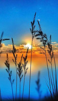 nascer do sol - Life ideas Beautiful Nature Wallpaper, Beautiful Sunset, Beautiful Landscapes, Beautiful Landscape Photography, Nature Pictures, Beautiful Pictures, Sunrise Pictures, Sunset Images, Sunset Pics