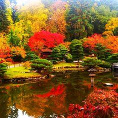 Japanese Garden, Seattle