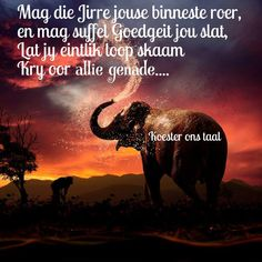 So mooi Afrikaans, Psalms, Bar, Humor, Sayings, Quotes, Movies, Movie Posters, Quotations
