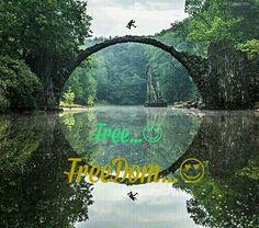 free...freedom...☀