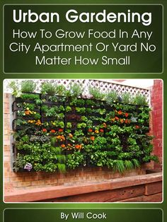 Urban Gardening: How To Grow Food In Any City Apartment Or Yard No Matter How Small (Growing Indoors, On Rooftop, Small Yards, Balcony Gardens, Planting ... Gardening Systems) (Gardening Guidebooks): Will Cook: Amazon.com: Kindle Store