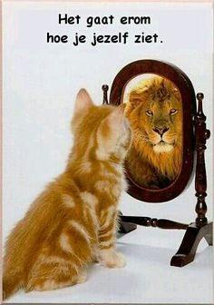 Het gaat erom hoe je jezelf ziet!