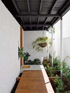 Gibbon Street House is a single-family house that has been expanded and renovated by Cavill Architects, a Brisbane based architecture practice Danish Modern, Indoor Garden, Home And Garden, Patio Central, Garden Design, House Design, House Ideas, Wood Architecture, Street House