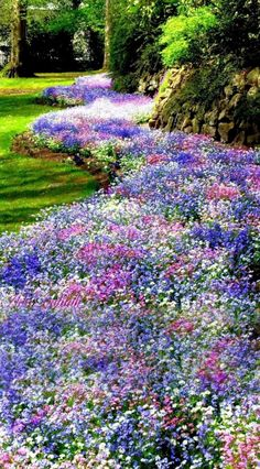 amazing front yard landscaping ideas on a budget 2019 12 > Fieltro.Net 40 Amazing Front Yard Landscaping Ideas on A Budget 2019 > Fieltro. Garden Cottage, Front Yard Landscaping, Landscaping Ideas, Front Yard Landscape Design, Hydrangea Landscaping, Inexpensive Landscaping, Shade Garden, Dream Garden, Garden Inspiration