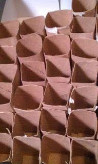 Savory Le Jardin: A Frugal Gardener: DIY Cardboard Seed Starting Pots Preschool Garden, Diy Greenhouse, Greenhouse Growing, Grilling Gifts, Organic Gardening Tips, Diy Cardboard, Hobby Farms, Garden Seeds, Organic Vegetables