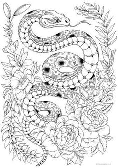 Snake - Printable Adult Coloring Page from Favoreads (Coloring book pages for adults and kids, Coloring sheets, Colouring designs) - Coloring Pages Snake Coloring Pages, Detailed Coloring Pages, Printable Adult Coloring Pages, Flower Coloring Pages, Mandala Coloring Pages, Coloring Pages To Print, Free Coloring Pages, Coloring Books, Kids Coloring