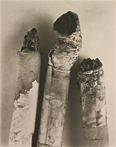 irving penn still life Still Life Photography, Art Photography, Advanced Photography, Fashion Photography, Irving Penn Flowers, Classic Photographers, Wolfgang Tillman, Growth And Decay, Organic Structure