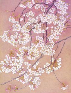 ソメイヨシノ(12号変形) Sakura Painting, Japanese Painting, Silk Painting, Japanese Art Styles, Textile Sculpture, Watercolor Wallpaper, Botanical Drawings, Japan Art, Beautiful Paintings