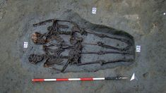 Lovers of Modena skeletons holding hands were both men - BBC News