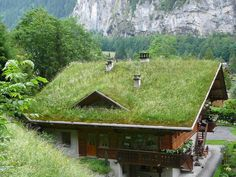 Lauterbrunnen - Grass Roof House // Great Gardens & Ideas // This will definitely cools down room temperature a few degrees?. Picture it with a window that open up and out, giving you a rood top garden?