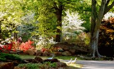 Oklahoma is home to lush botanical gardens with a wide variety of plants from all over the world. Experience their beauty and spend some time outdoors relaxing. Browse through all of the state's gardens by clicking the picture of Honor Heights Park in Muskogee here!
