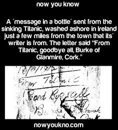 ๏̯͡๏﴿ Its a Fact Wow Facts, Wtf Fun Facts, Random Facts, Amazing Facts, Interesting Facts, Random Stuff, Titanic Funny, Titanic Ship, Rms Titanic