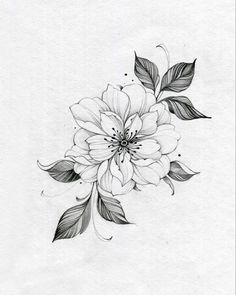 Floral Tattoo Design, Flower Tattoo Designs, Flower Tattoos, Mini Tattoos, Body Art Tattoos, Small Tattoos, Pencil Art Drawings, Art Drawings Sketches Simple, Beetlejuice Tattoo