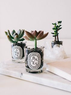 simple gift ideas // cute potted succulents in old candle jars | A Fabulous Fete