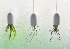 Make hanging planters - great ideas for mini terrariums