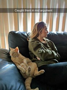 Cat and wife caught in mid argument ~ funny snapchat humor Snapchat Humor, Snapchat Stories, Cat Owner Humor, Funny Pics, Funny Cat Pictures, Funny Cute, Funny Memes, Cat Memes, Cute Funny Animals