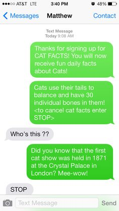 how to cancel cat facts