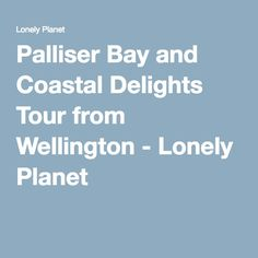 Palliser Bay and Coastal Delights Tour from Wellington - Lonely Planet