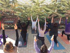 Aprite le porte, arriva L'OpenMay! Yoga, Fiori e Musica, Roma/7 Maggio