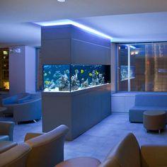 Dividere 2 ambienti con un acquario