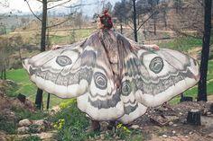 まるでファンタジー世界。蝶をモチーフにした美しいスカーフ   ARTIST DATABASE - Part 2