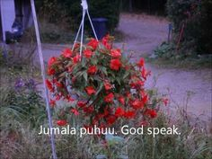 Toikkanen Pentti Sissi, God, Youtube, Plants, Free, Dios, Allah, Plant, Youtubers