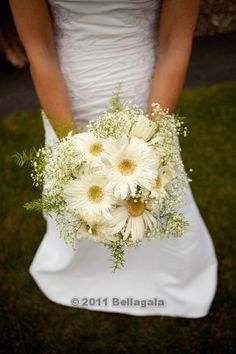 I like this gerbera daisy and babies breath bridal bouqet! (Maybe w a little yellow thrown in) Baby's Breath Bridal Bouquet, Daisy Bridal Bouquet, Gerbera Daisy Bouquet, Daisy Wedding, Bride Bouquets, Bridesmaid Bouquet, Floral Wedding, Wedding Flowers, Dream Wedding