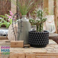 Ibizatuin in Ede | Eigen Huis & Tuin Aflevering 7