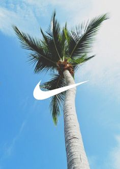 another palm tree one Nike Wallpaper, Wall Wallpaper, Palm Trees Tumblr, Videos Instagram, Free Hd Wallpapers, Summer Of Love, Summer Dream, Summer Beach, Beach Pictures