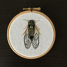Een persoonlijke favoriet uit mijn Etsy shop https://www.etsy.com/listing/274747074/embroidery-hoop-cicada