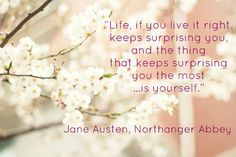 Northanger Abbey quote. I really should read this, one of the only jane Austen books I havent read.