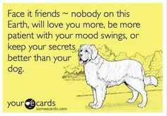 I love my dog probably more than I love Dogs Love My Dog, Puppy Love, Best Inspirational Quotes, Inspiring Quotes About Life, Motivational Quotes, Baby Dogs, Dogs And Puppies, Doggies, Fluffy Puppies
