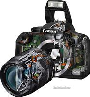 Cutaway view of the Canon Digital Rebel 1000D, a part of Stanford's entire photography free online course.