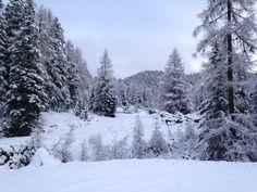 Turracher Höhe weer bijna gereed voor seizoen 2014/2015 Winter Holidays, Wonderful Places, Mountains, Travel, Outdoor, Beautiful, Outdoors, Viajes, Destinations