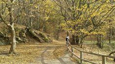 Bukki national park - jesienne klimaty rowerowe