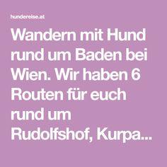 Wandern mit Hund rund um Baden bei Wien. Wir haben 6 Routen für euch rund um Rudolfshof, Kurpark, Ruine Rauheneck & Rudolf Proksch Hütte. Ruins, Bathing