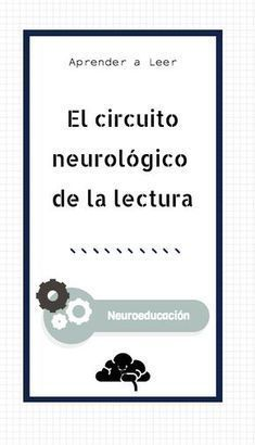 ¿Qué ocurre en nuestro cerebro cuando leemos?¿Cuál es el circuito neurológico de la lectura? La lectura desde la neurociencia . #neuroeducación #aprenderaleer #lectoescritura #neurociencia Study Techniques, Teaching Techniques, Kids Learning Activities, Teaching Resources, Pre Writing, Lectures, Teacher Hacks, Conte, Learn To Read