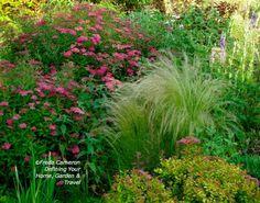 Stipa (grass) and spirea (shrubs) Spirea Shrub, Mexican Feather Grass, Rose Campion, Deer Resistant Garden, Stipa, Garden Inspiration, Garden Ideas, Backyard Ideas, Backyard Makeover