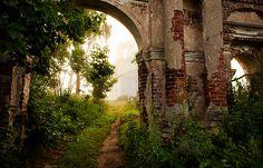 Growing ruins