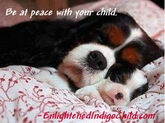 Be at peace with your child.- Enlightened Indigo Child Read a bit of the book at Amazon. http://www.amazon.com/Enlightened-Indigo-Child-Personal-Flourishing/dp/1477455396/ref=sr_1_3?s=books&ie=UTF8&qid=1393190972&sr=1-3&keywords=idelle+brand