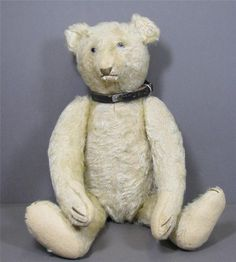 Steiff Antique White Mohair Teddy Bear 1904/05 Blank Button In Ear #Steiff