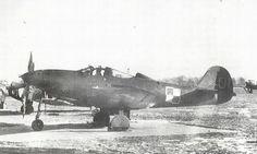 P-39Q Airacobra nr ogonowy 01 z 2. pułku lotnictwa specjalnego - osobisty samolot gen. Fiodora Połynina dowódcy lotnictwa polskiego w latach 1944-47.