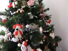 ♥ Cat in a Christmas tree | Flickr - Photo Sharing!