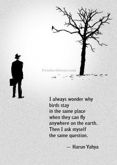 The Same Place