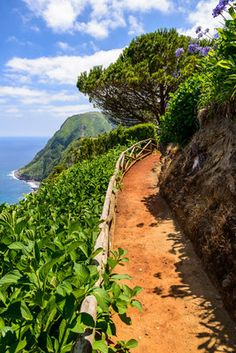 Azores-Portugal-European-Best-Destinations. Don't forget when traveling that electronic pickpockets are everywhere. Always stay protected with an Rfid Blocking travel wallet. https://igogeer.com for more information. #igogeer