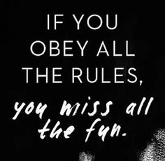 If you obey all the rules, you miss all the fun!!
