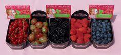 Zoal gezegd bieden we heerlijke vruchten aan zoals rode bessen, stekelbessen, braambessen, frambozen en blauwe bessen... en dat alles 100% biologisch!