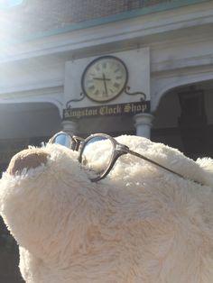#MrBear #DavidGreen #Kingston #Bear #Tourist #Eyewear #TOC #Exclusive