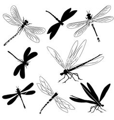 Illustration about Set with the image of silhouettes of dragonflies, tattoo. Illustration of picture, predator, silhouette - 17385856 Dragonfly Meaning, Small Dragonfly Tattoo, Dragonfly Art, Dragonfly Photos, Beaded Dragonfly, Dragonfly Silhouette, Silhouette Clip Art, Animal Silhouette, Silhouette Painting
