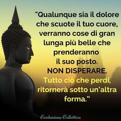 #aforismi#frasi #citazioni #dolore #buddha #evoluzionecollettiva Lessons Learned In Life, Life Lessons, Best Quotes, Life Quotes, Attitude Quotes, Quotes Quotes, Daily Wisdom, Meditation Quotes, Yoga Meditation
